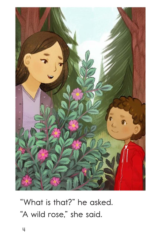 Book Preview For A Walk With Mom Page 4