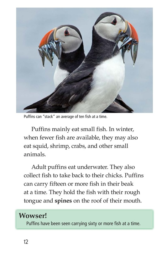 Book Preview For Puffins Page 12