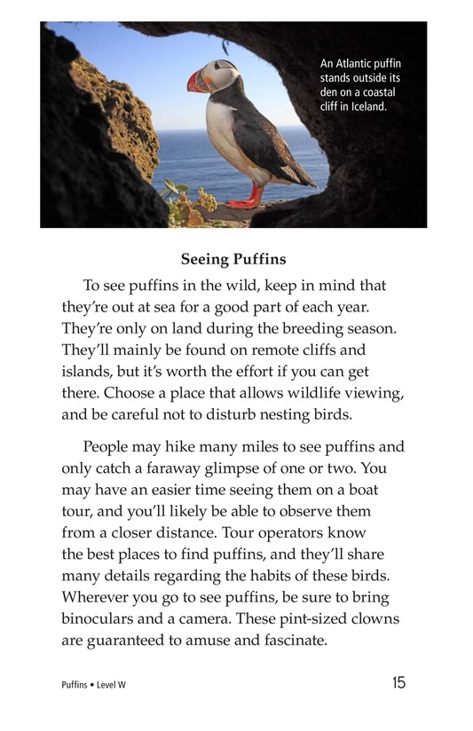 Book Preview For Puffins Page 15