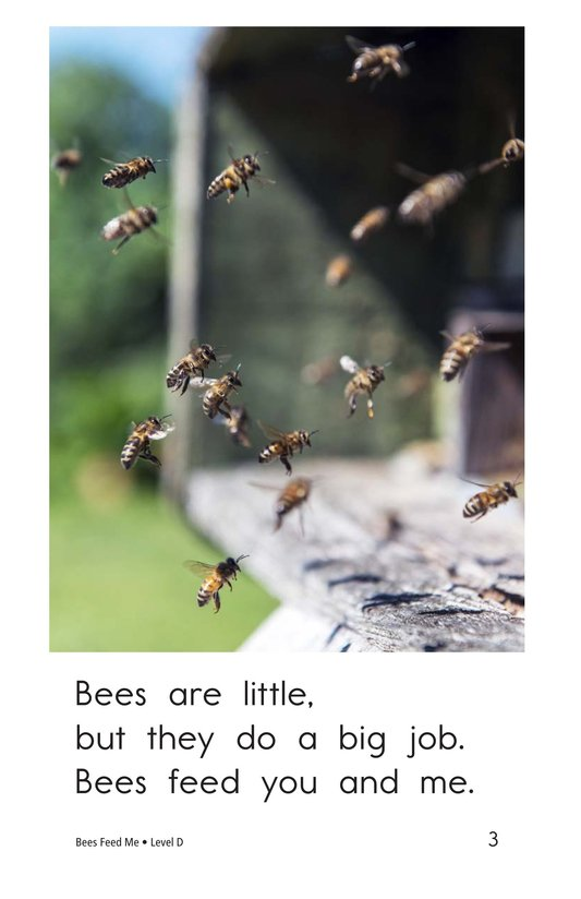 Book Preview For Bees Feed Me Page 3