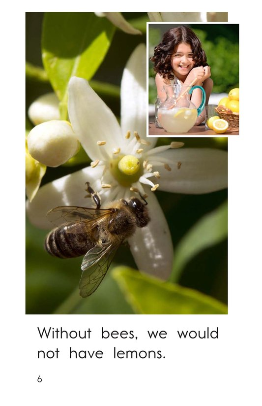 Book Preview For Bees Feed Me Page 6