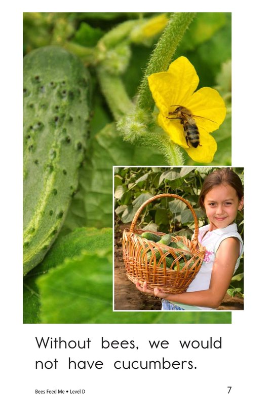 Book Preview For Bees Feed Me Page 7