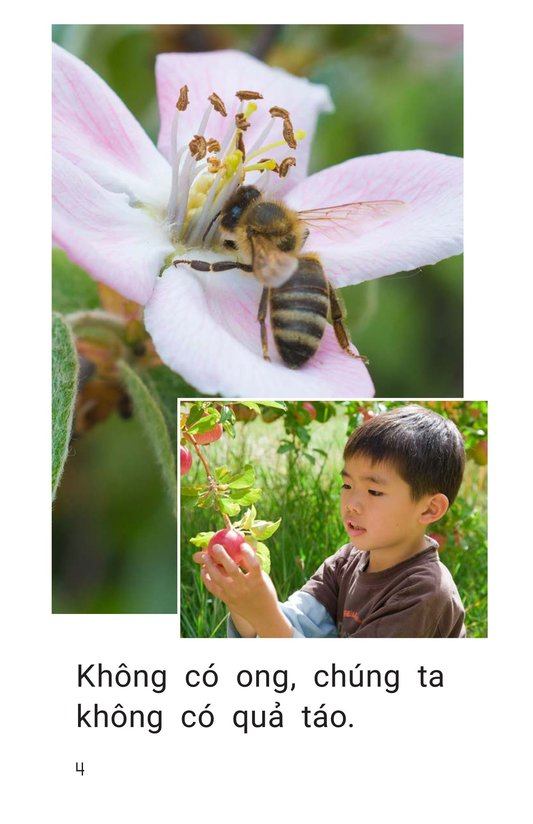 Book Preview For Bees Feed Me Page 4