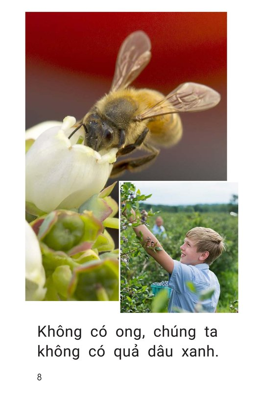 Book Preview For Bees Feed Me Page 8