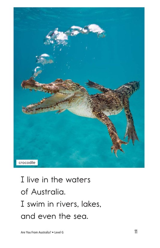 Book Preview For Are You From Australia? Page 11