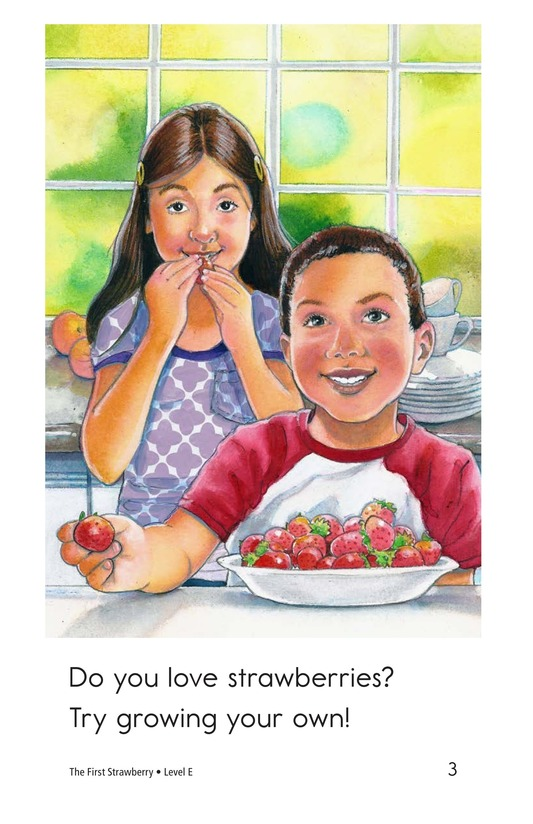 Book Preview For The First Strawberry Page 3
