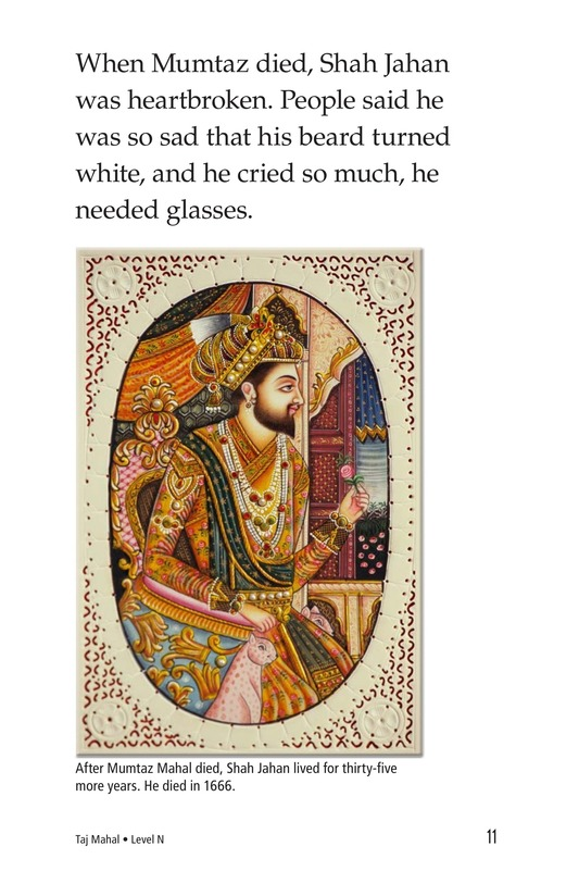 Book Preview For Taj Mahal Page 11