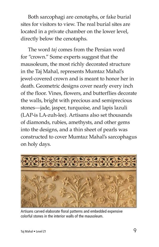 Book Preview For Taj Mahal Page 9