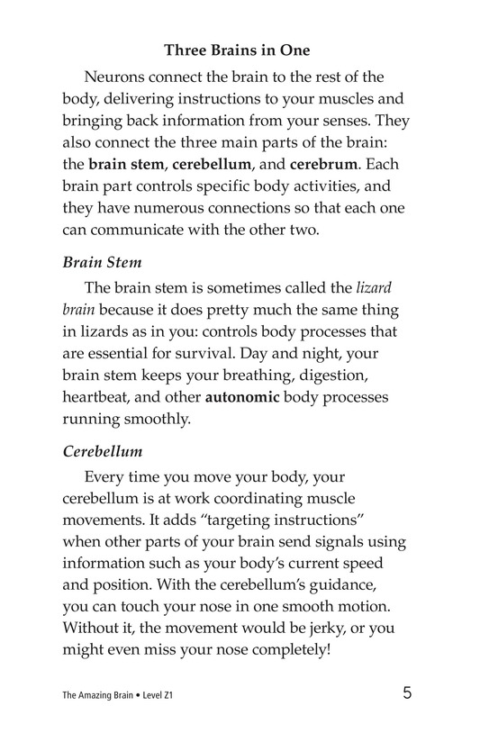 Book Preview For The Amazing Brain Page 5