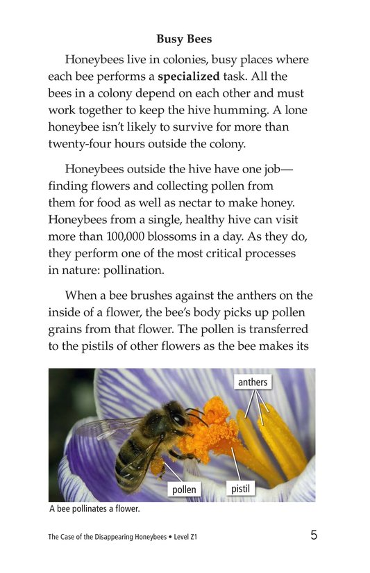 Book Preview For The Case of the Disappearing Honeybees Page 5