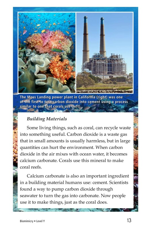 Book Preview For Biomimicry Page 13