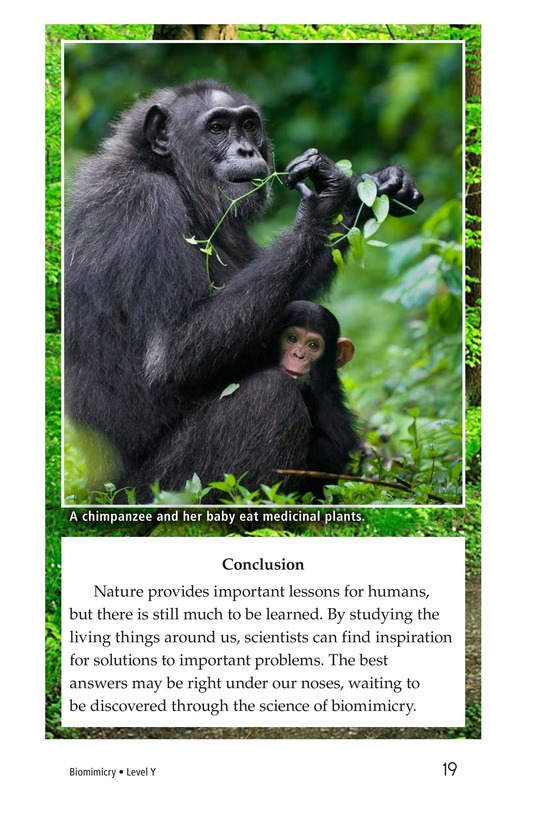 Book Preview For Biomimicry Page 19