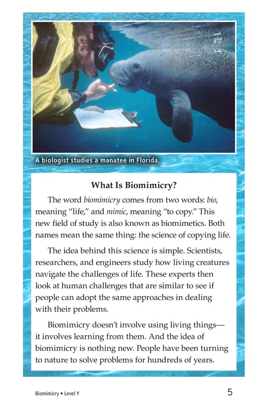 Book Preview For Biomimicry Page 5