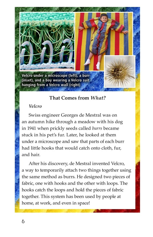 Book Preview For Biomimicry Page 6