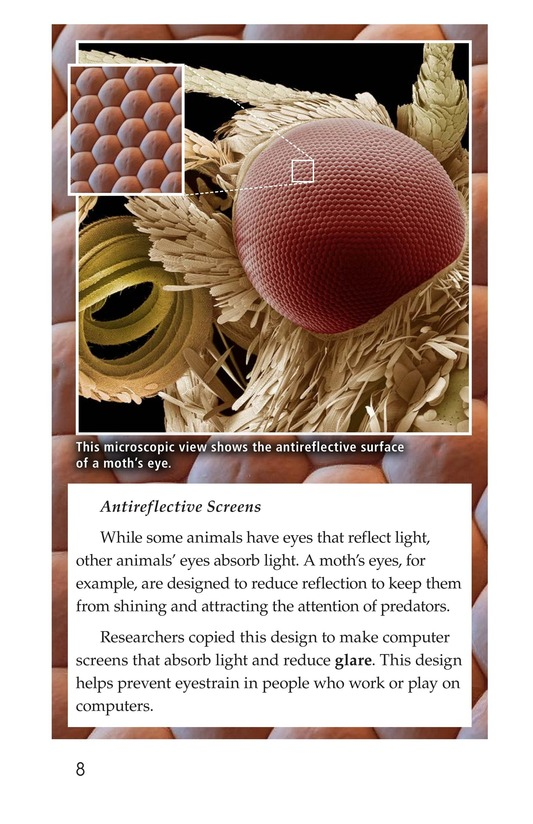 Book Preview For Biomimicry Page 8