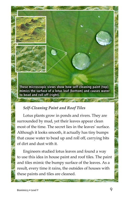 Book Preview For Biomimicry Page 9