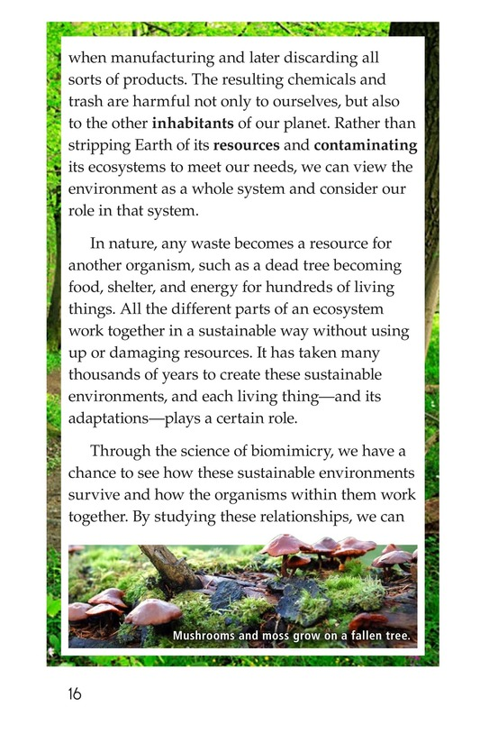Book Preview For Biomimicry Page 16