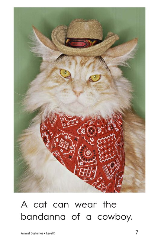 Book Preview For Animal Costumes Page 7