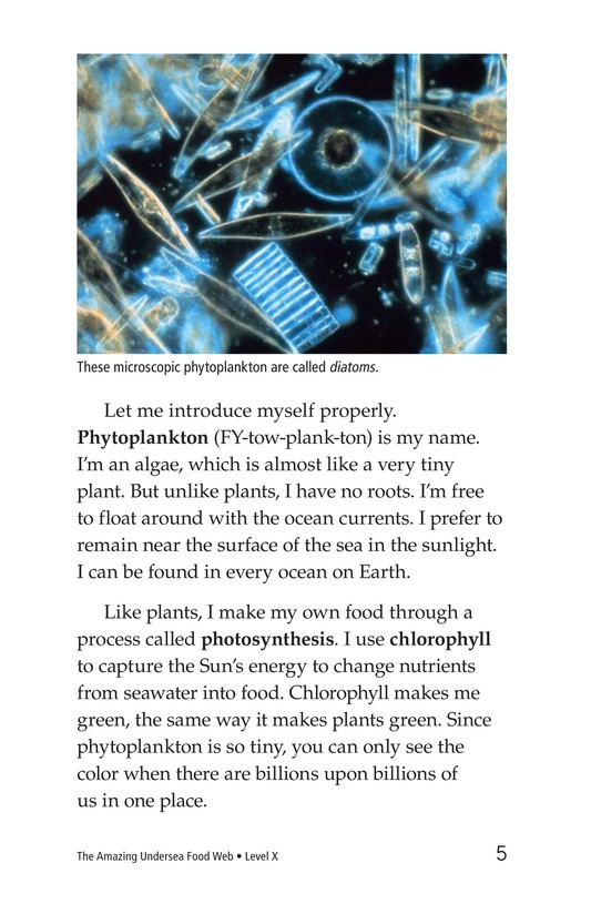 Book Preview For The Amazing Undersea Food Web Page 5