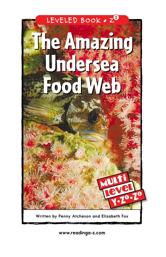 Book Preview For The Amazing Undersea Food Web Page 0