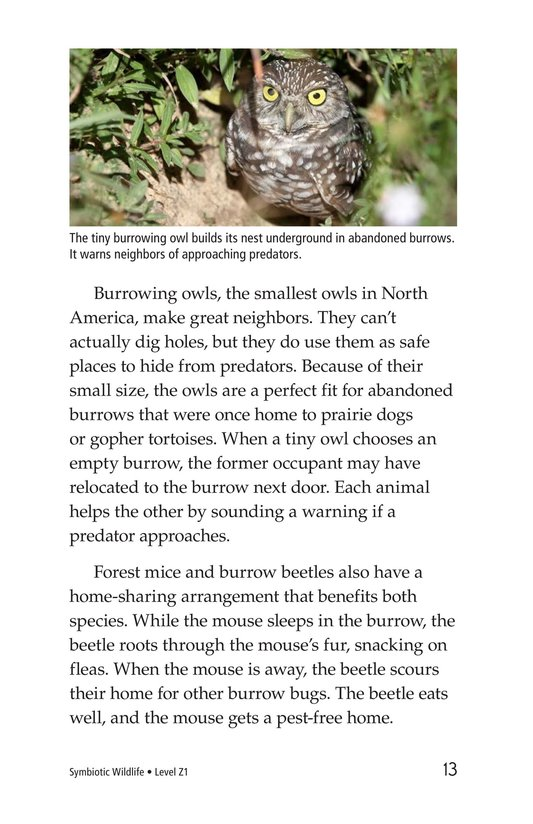 Book Preview For Symbiotic Wildlife Page 13