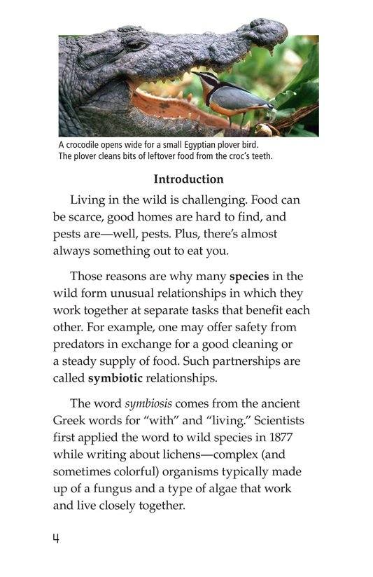 Book Preview For Symbiotic Wildlife Page 4