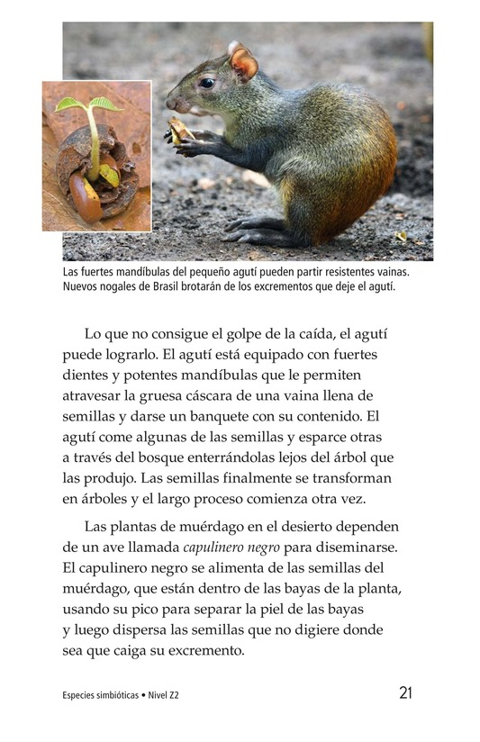 Book Preview For Symbiotic Wildlife Page 21