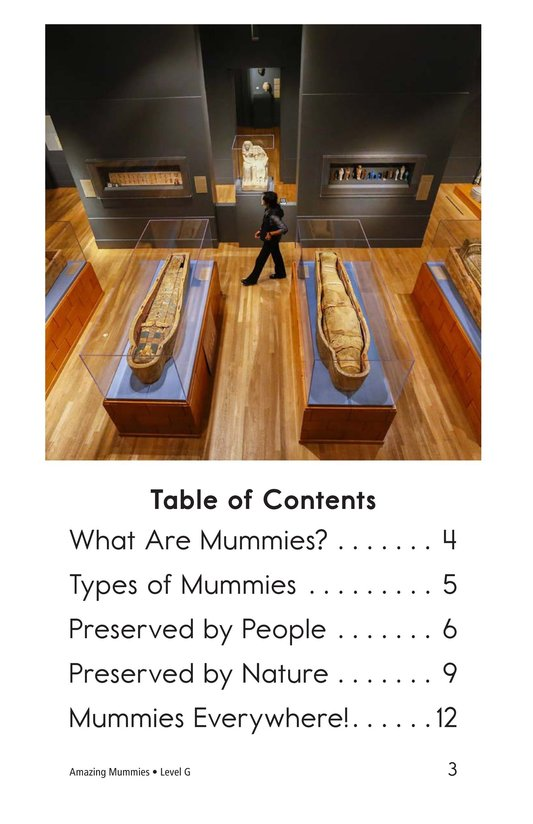 Book Preview For Amazing Mummies Page 3