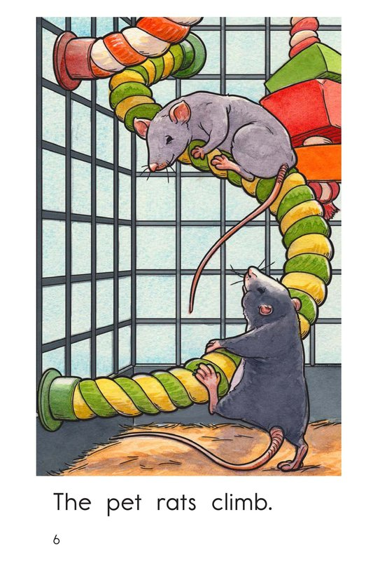 Book Preview For The Pet Rats Page 6