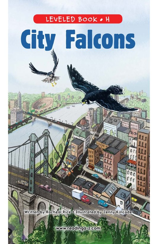 Book Preview For City Falcons Page 0