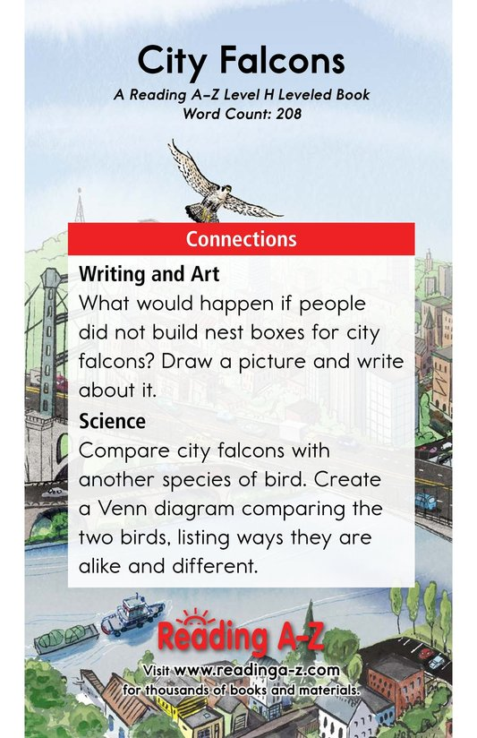 Book Preview For City Falcons Page 17