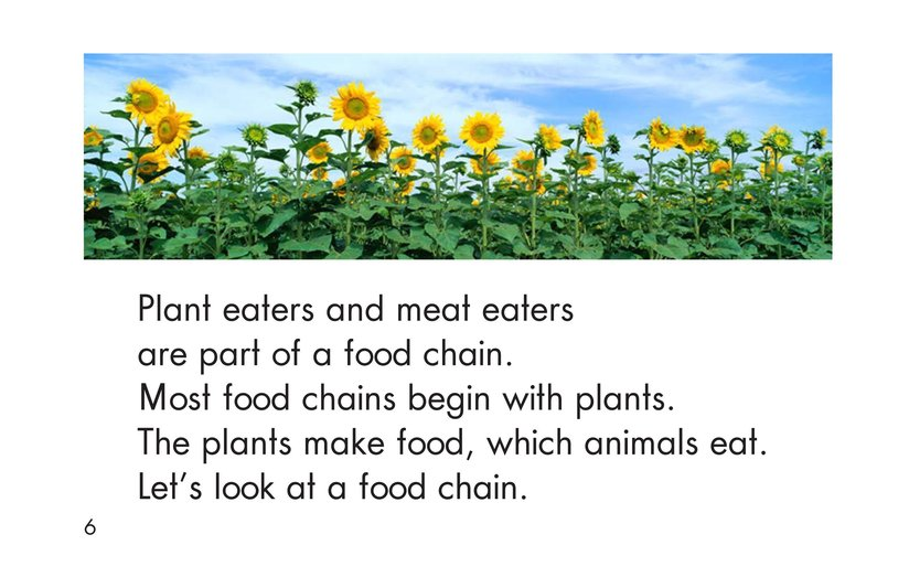 Book Preview For The Food Chain Page 6