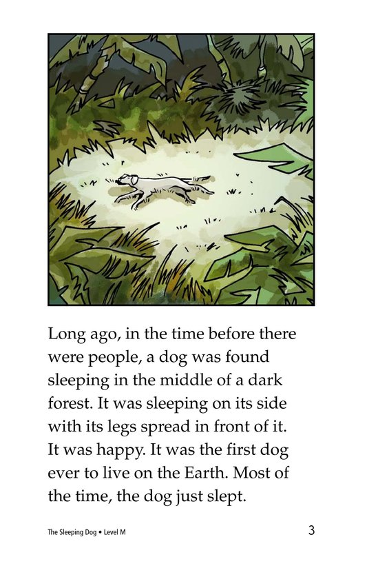 Book Preview For The Sleeping Dog Page 3