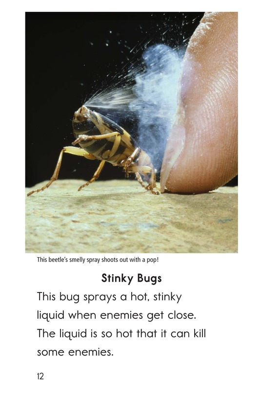 Book Preview For Nature Stinks! Page 12