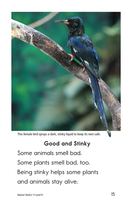 Book Preview For Nature Stinks! Page 15