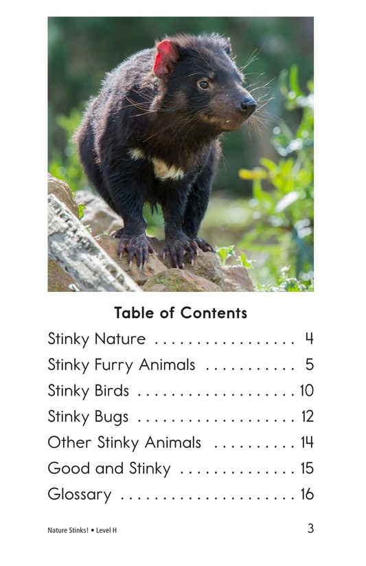 Book Preview For Nature Stinks! Page 3