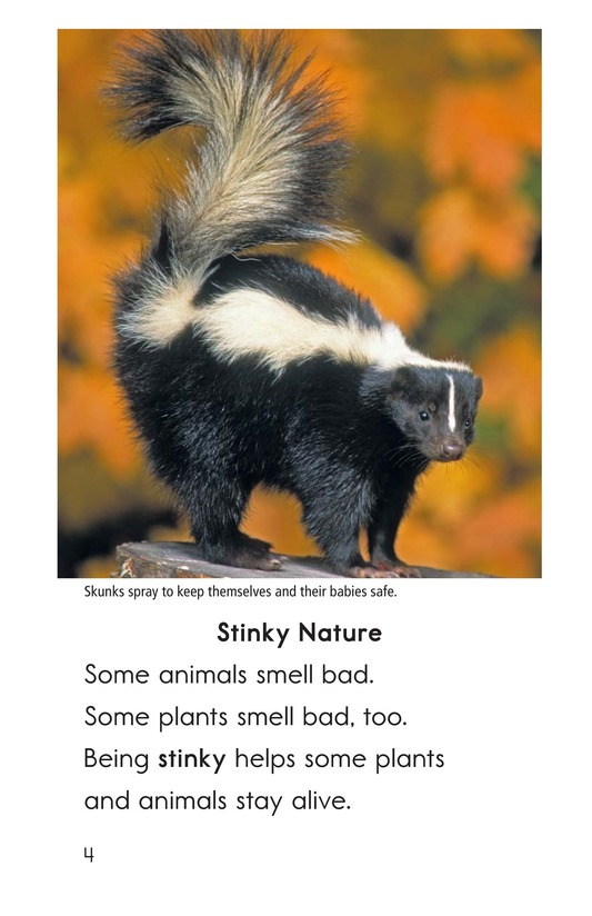 Book Preview For Nature Stinks! Page 4