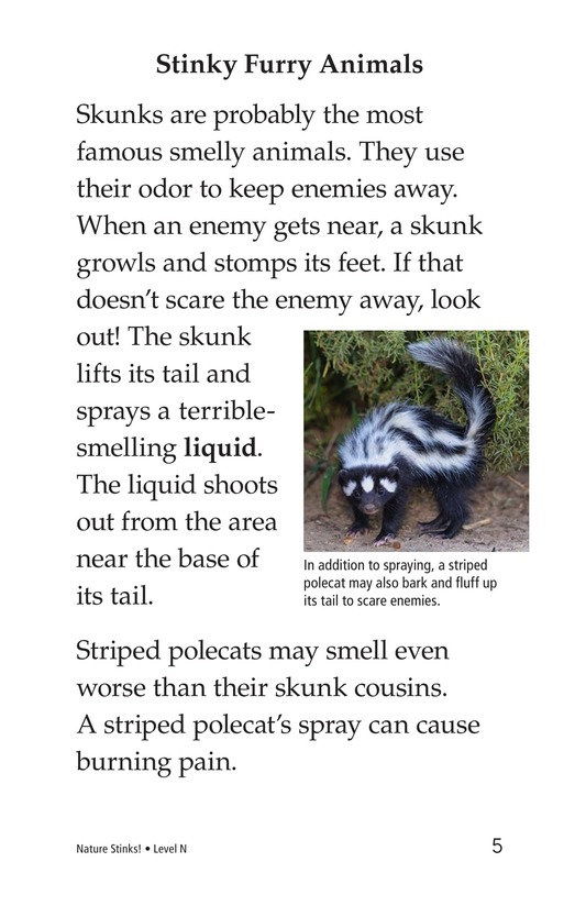 Book Preview For Nature Stinks! Page 5