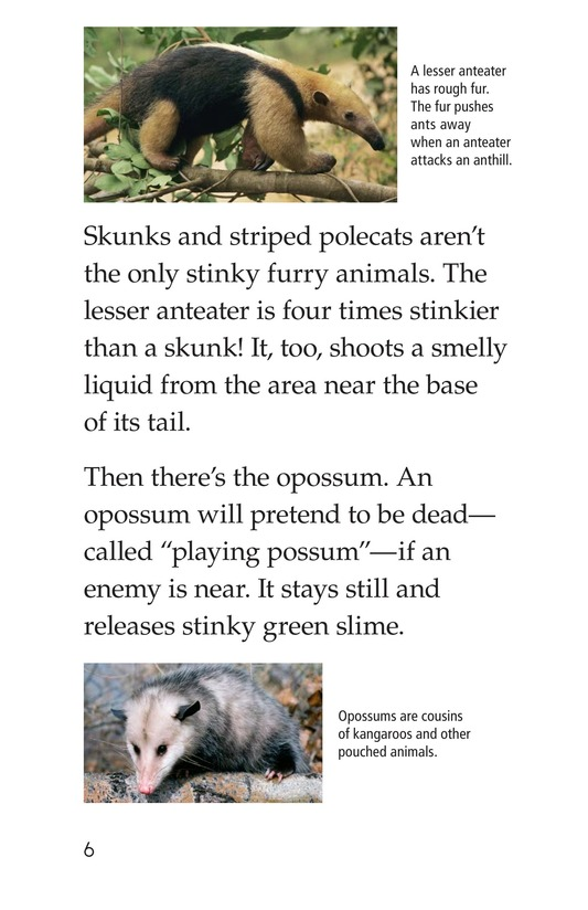 Book Preview For Nature Stinks! Page 6