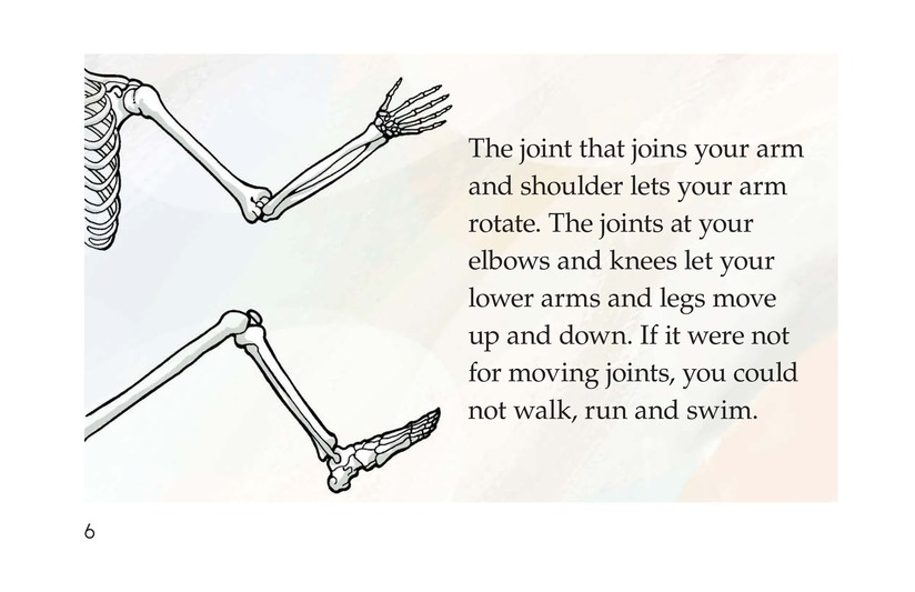 Book Preview For Inside Your Body Page 6