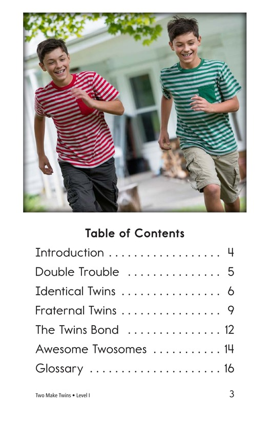 Book Preview For Two Make Twins Page 3