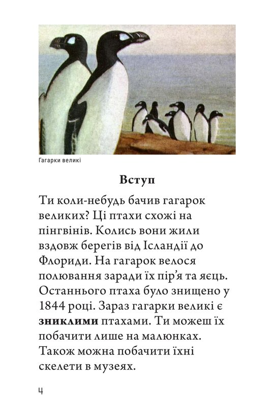 Book Preview For Endangered Birds Page 4