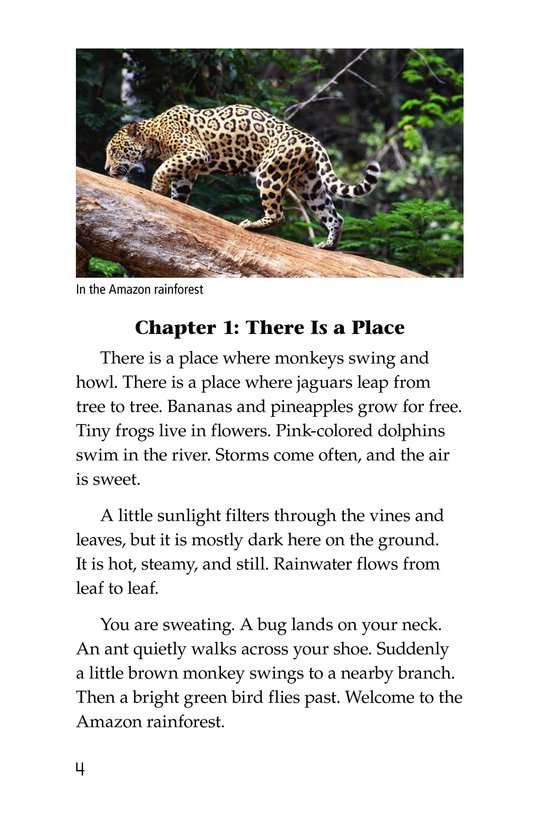 Book Preview For The Amazing Amazon Page 4
