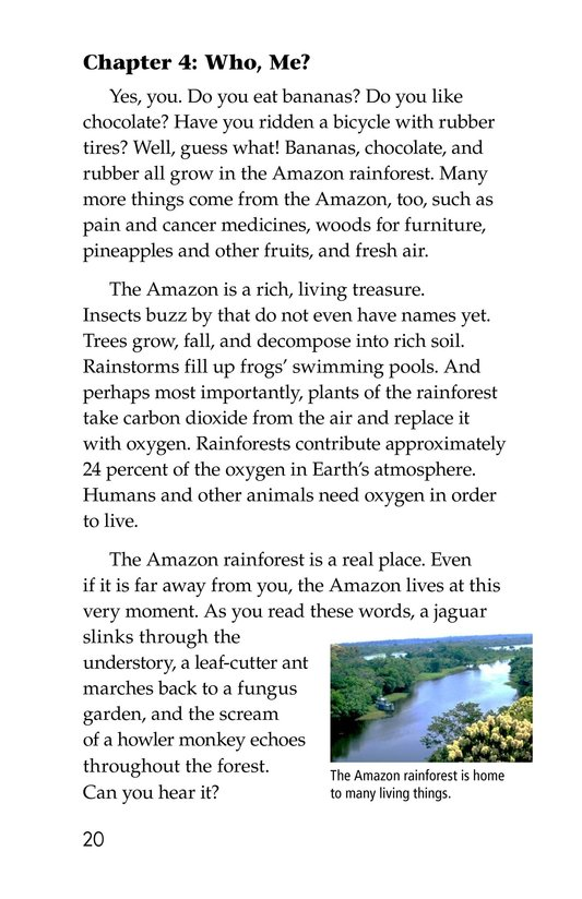 Book Preview For The Amazing Amazon Page 20