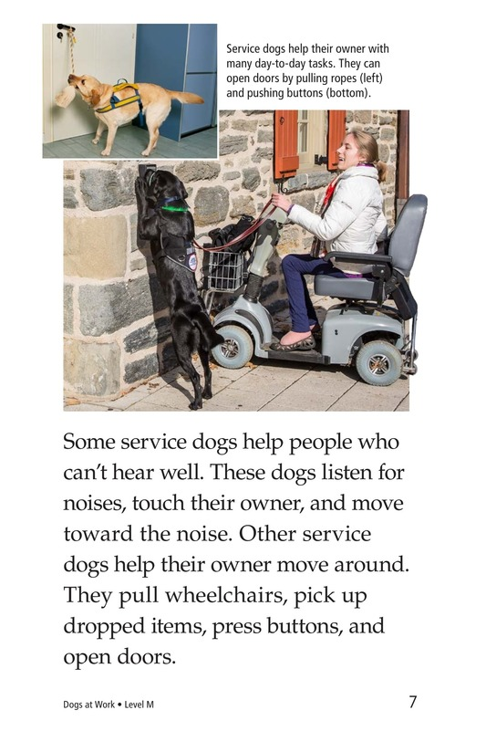 Book Preview For Dogs at Work Page 7