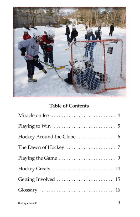 Book Preview For Hockey Page 3