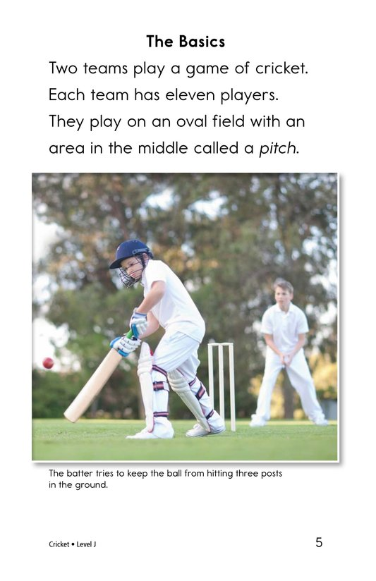 Book Preview For Cricket Page 5