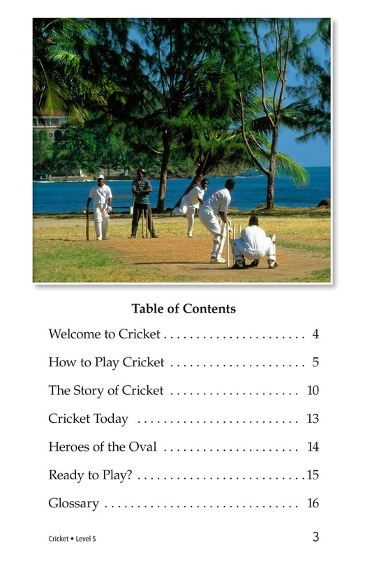 Book Preview For Cricket Page 3