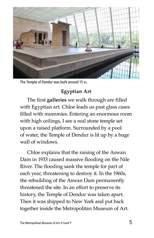 Book Preview For The Metropolitan Museum of Art Page 5