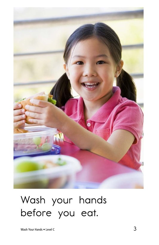 Book Preview For Wash Your Hands Page 3